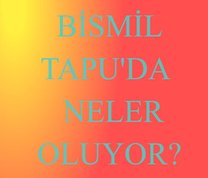 BİSMİL TAPU'DA NELER OLUYOR?